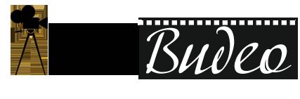 программа ЛовиВидео(LoviVideo) пользу кого скачивания видео фильмов да музыки